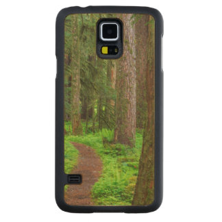 Scenic of old growth forest maple galaxy s5 case