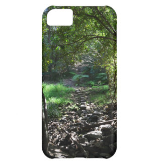 Scenic Path iPhone 5C Case