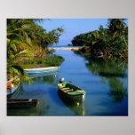 Scenic river near Ocho Rios in Jamaica Poster