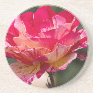 scenic roses beverage coasters