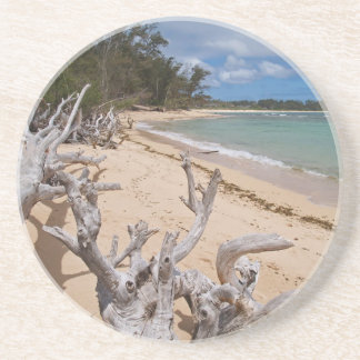Scenic Series---Driftwood Coaster