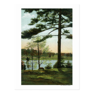 Scenic View at Chestnut Hill Reservoir Postcard