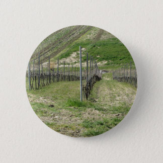 Scenic view of rolling hillside with vineyards 2 inch round button
