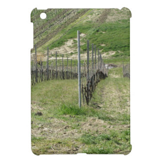 Scenic view of rolling hillside with vineyards cover for the iPad mini
