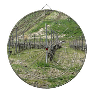 Scenic view of rolling hillside with vineyards dartboard