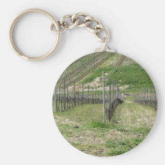 Scenic view of rolling hillside with vineyards keychain