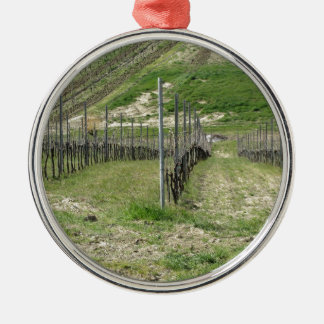 Scenic view of rolling hillside with vineyards metal ornament