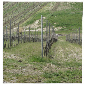 Scenic view of rolling hillside with vineyards napkin