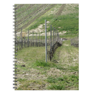 Scenic view of rolling hillside with vineyards notebook