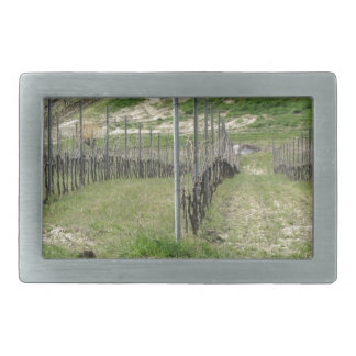 Scenic view of rolling hillside with vineyards rectangular belt buckles
