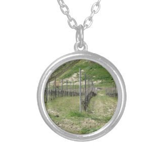 Scenic view of rolling hillside with vineyards silver plated necklace