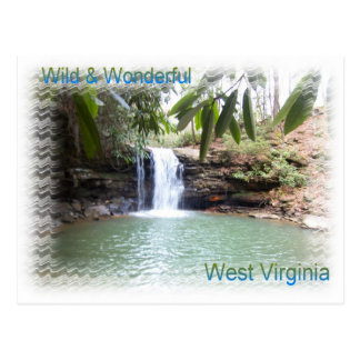 Scenic West Virginia Waterfall Postcard
