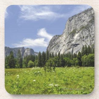 Scenic Yosemite Valley, California Drink Coasters