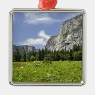 Scenic Yosemite Valley, California Silver-Colored Square Ornament