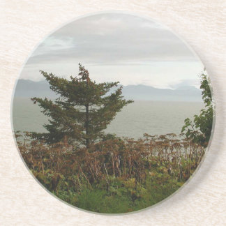 Scenics Kachemak Bay Coasters