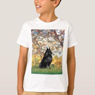 Schipperke 6 - Spring T-Shirt