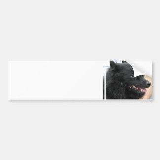 Schipperke Bumper Sticker