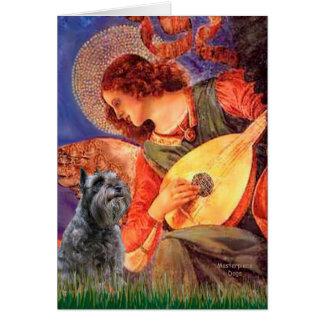 Schnauzer 12 - Mandolin Angel Card