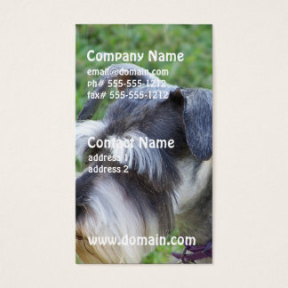 Schnauzer Business Cards