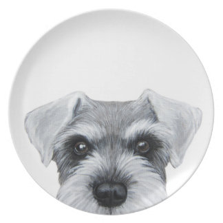 schnauzer grey, salt and pepper plate