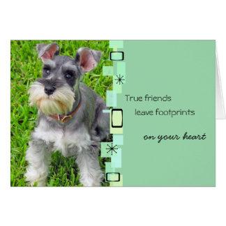 Schnauzer Puppy Birthday Greeting Card