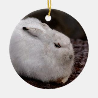 Schneehase Cute Zoo Animal Animal World Fur Hare Ceramic Ornament