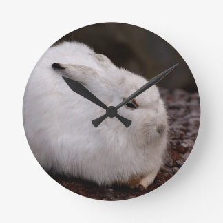 Schneehase Cute Zoo Animal Animal World Fur Hare Round Clock