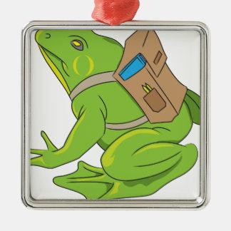 School Frog Metal Ornament