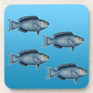 School of Blue Parrotfish Coaster
