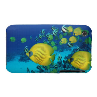 School of Butterfly Fish Swimming on the Seabed Case-Mate iPhone 3 Case
