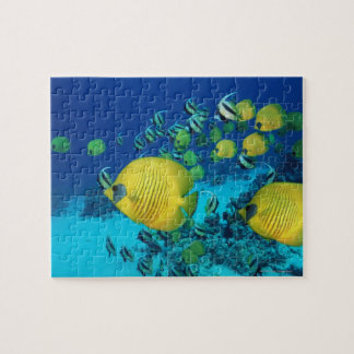 School of Butterfly Fish Swimming on the Seabed Jigsaw Puzzle