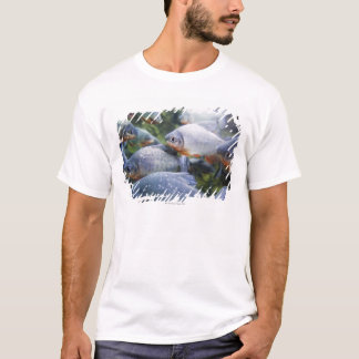 School of Piranhas (Pygocentrus nattereri) T-Shirt