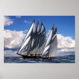 schooner race poster