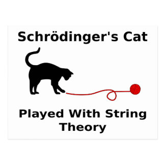 Schrödinger's Cat Played With String Theory Postcard