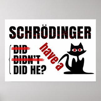 Schrodinger's Dillema Poster