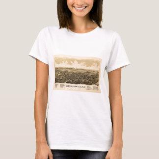 schuylerville1889 T-Shirt