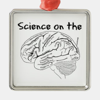 Science on the Brain Metal Ornament