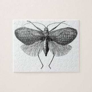 scientific illustration of moth jigsaw puzzle