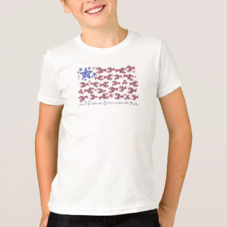 Scituate Mass 4th of July Lobster Tee