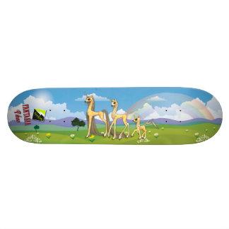 """Scolletta """"Fantasia Palimo"""" Deck 063 Skate Boards"""