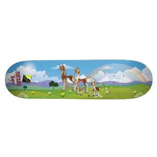 "Scolletta ""Fantasia Teagrey"" Deck 064 Skate Board Decks"