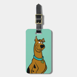 Scooby Doo Pose 27 Bag Tag