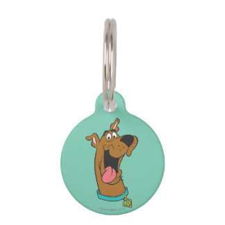Scooby Doo Pose 49 Pet ID Tag