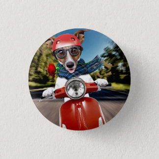 Scooter dog ,jack russell 1 inch round button