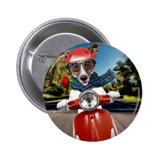 Scooter dog ,jack russell 2 inch round button