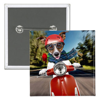 Scooter dog ,jack russell 2 inch square button