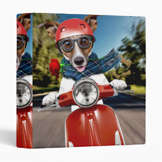 Scooter dog ,jack russell 3 ring binder
