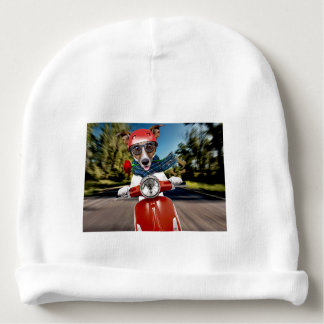 Scooter dog ,jack russell baby beanie