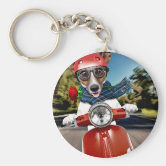 Scooter dog ,jack russell basic round button keychain