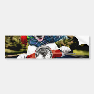 Scooter dog ,jack russell bumper sticker